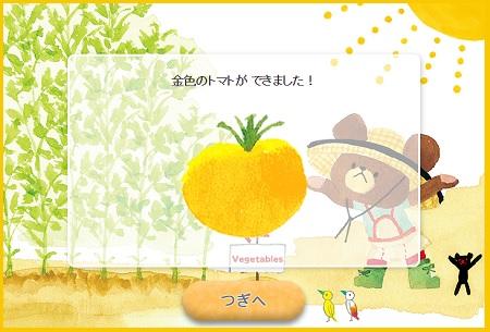 しゅうかく金色のトマト