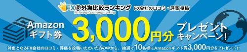 3000円分プレゼント