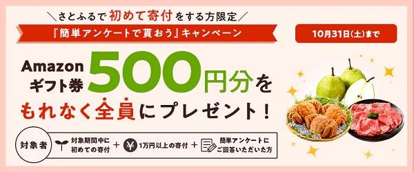 1万円以上の寄付でAmazonギフト券500円分がプレゼント
