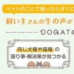 ペットの悩みQ&A「DOQAT」登録後の投稿完了で256円貰える!