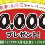 【ECナビ】1,000円当たる!「新春!お年玉キャンペーン」